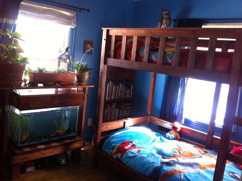 Aquarium For Bedroom