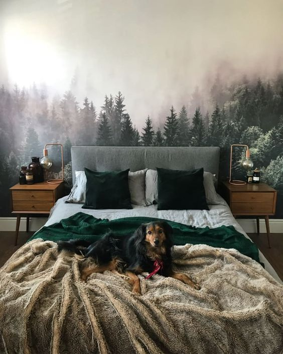 Forrest bedroom decor