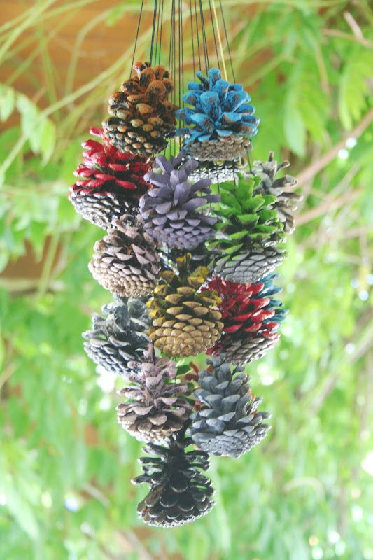 We can use pines fruit for decorations