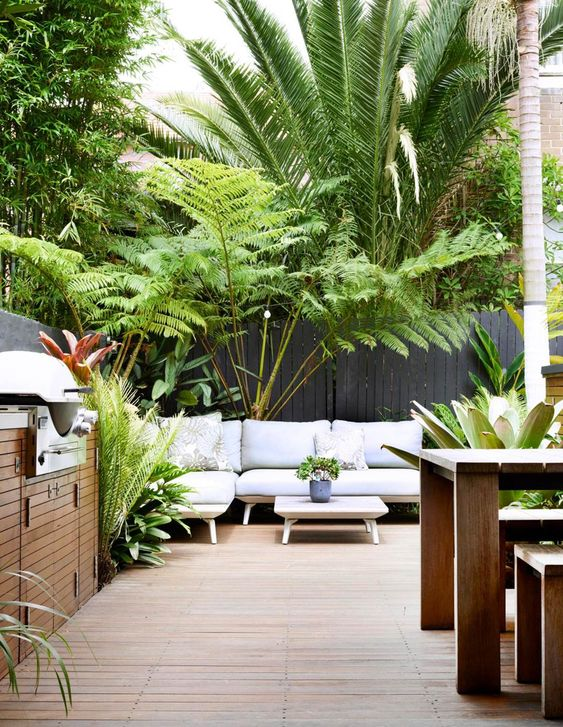 Tropical terrace with some plants