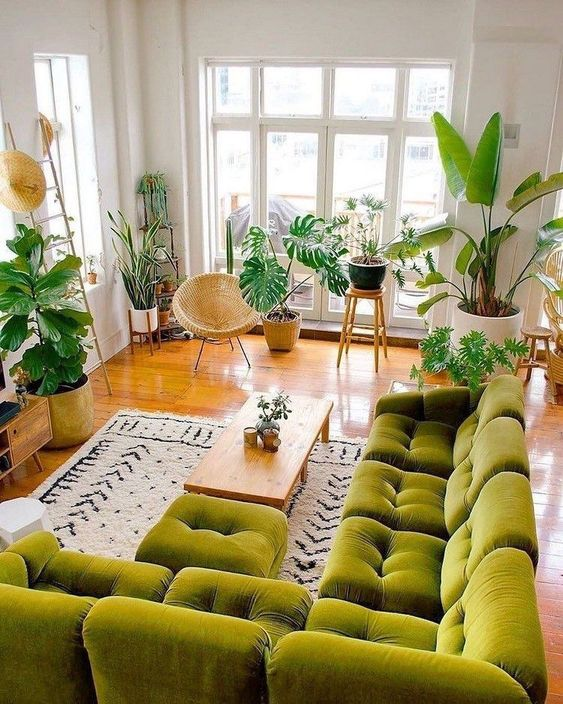 Green sofa with many windows create a stronger tropical accent