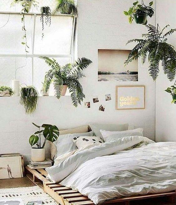 Minimalist rustic plants bedroom decor