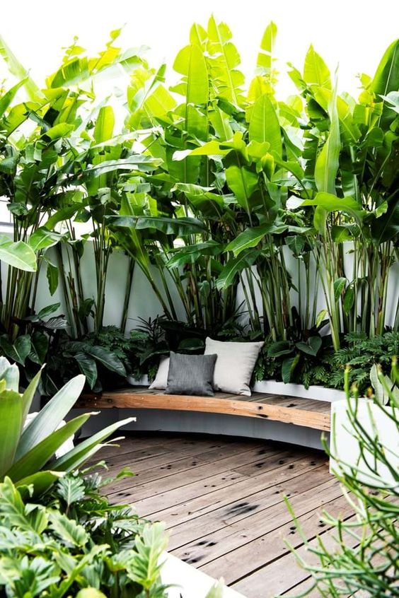 Tropical terrace exterior style
