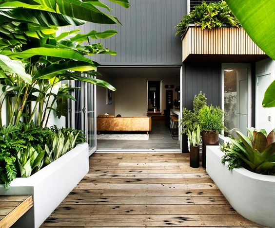Small tropical terrace