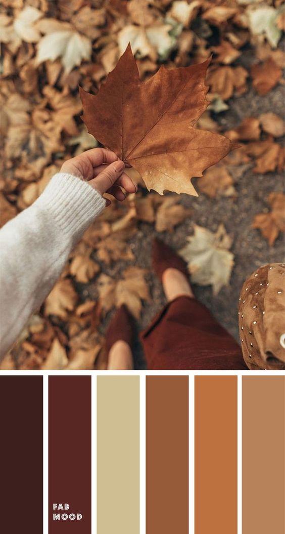 Autumn rustic paint colors