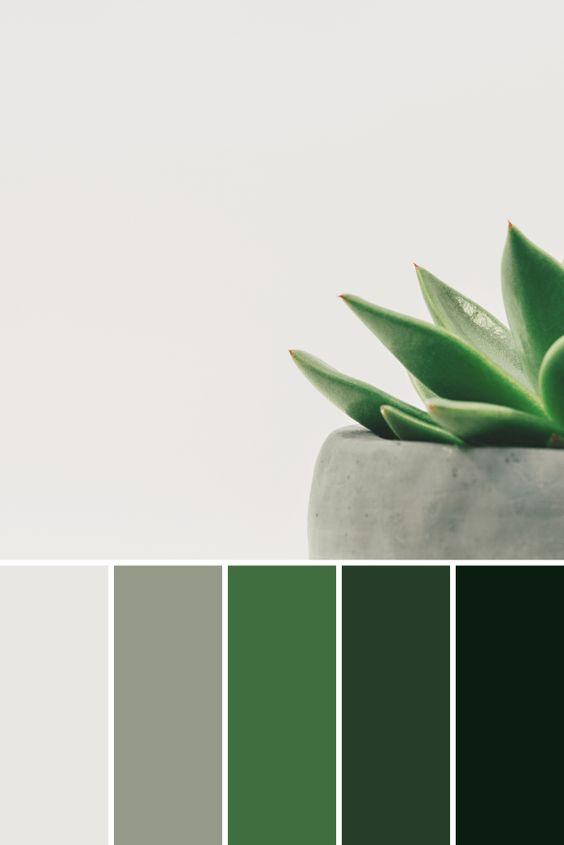 Plants color palette