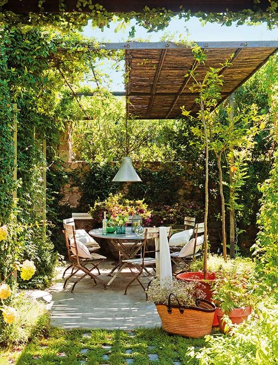 Vines can be grown in our outside dining room as decorations