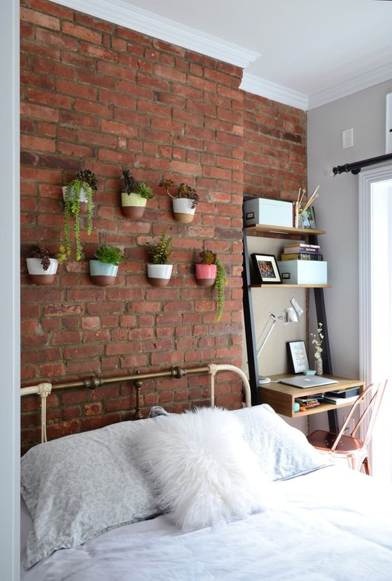 Attaching some plants to the wall